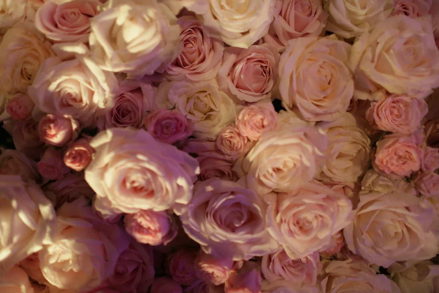 Wedding en Planning | weddingplanner | trouwen in de Vondelkerk | winterwedding | trouwen en feesten in een kerk | flowerwall | rozenwand | fotocredits Karen Kaper.JPG